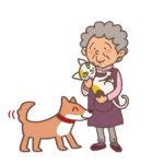 ペットの高齢化 ペットの老老介護が大きな社会問題に?改善策はあるの?
